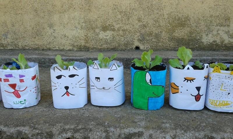 Resultado do obradoiro de agricultura ecolóxica.