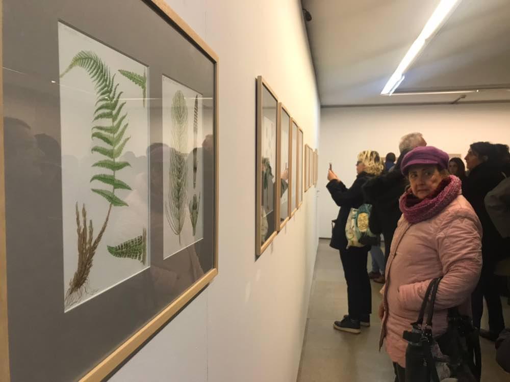 """Visitando a exposición """"Unha ollada natural"""" na Galería Sargadelos."""