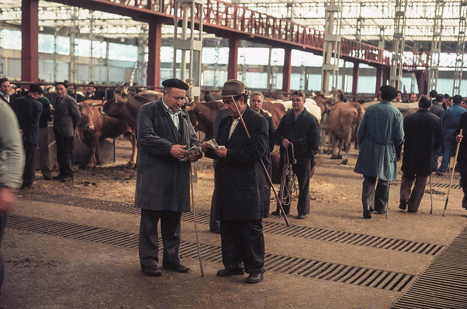 Unha fotografía da exposición: Feira de Santiago de Compostela en 1980.