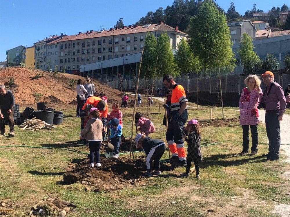 Plantación na parcela a carón do CEIP Ramón Cabanillas.